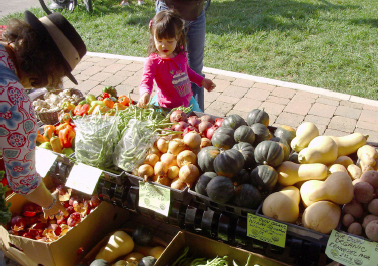 A little girl in a pink shirt, is picking up some green beans, at one of the stands.