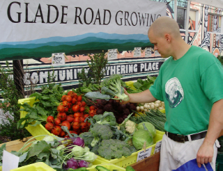 "A man in green is holding Broccoli; standing in front of a produce stand that reads ""Glade Road Growing."""