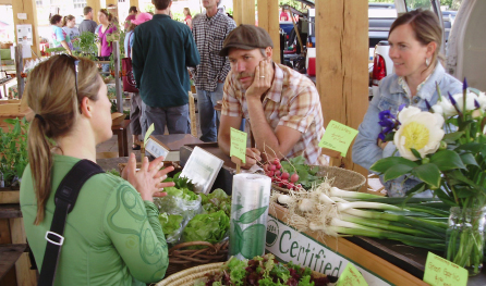 Market patron talks with farmers Bert Webster and Gwynn Hamilton. Leafy produce is on the counter.